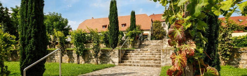 Auerstedt has a lot to offer: wine, culture and a museum world dedicated to the twin battles of Jena and Auerstedt in 1806, Thuringian tradition and the historic collections of carriages.
